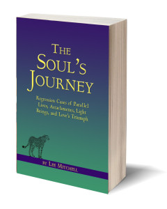 front-cover-for-The Souls Journey by Lee Mitchell